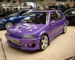 purple_106.jpg(S3)