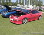 red_calibra_.jpg(S3)