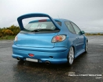 blue_206_rear.jpg