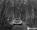 DHarriganImages - Easter stages Rally - RMS Report - image19