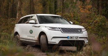 Range Rover Velar in Forest